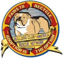 Bulldog Rescue Amerika